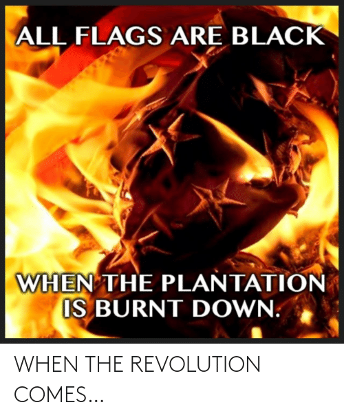 Revolution: ALL FLAGS ARE BLACK  WHEN THE PLANTATION  IS BURNT DOWN. WHEN THE REVOLUTION COMES…