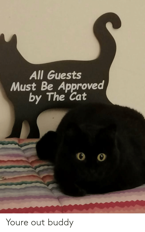 Approved: All Guests  Must Be Approved  by The Cat Youre out buddy