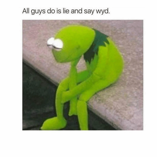Wyd, Girl Memes, and All: All guys do is lie and say wyd