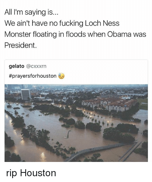 loch ness: All I'm saying is..  We ain't have no fucking Loch Ness  Monster floating in floods when Obama was  President  gelato @CXxxrn  rip Houston