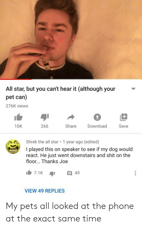 views: All star, but you can't hear it (although your  pet can)  276K views  +  266  Share  10K  Download  Save  Shrek the all star  1 year ago (edited)  I played this on speaker to see if my dog would  react. He just went downstairs and shit on the  floor... Thanks Joe  7.1K  49  VIEW 49 REPLIES My pets all looked at the phone at the exact same time