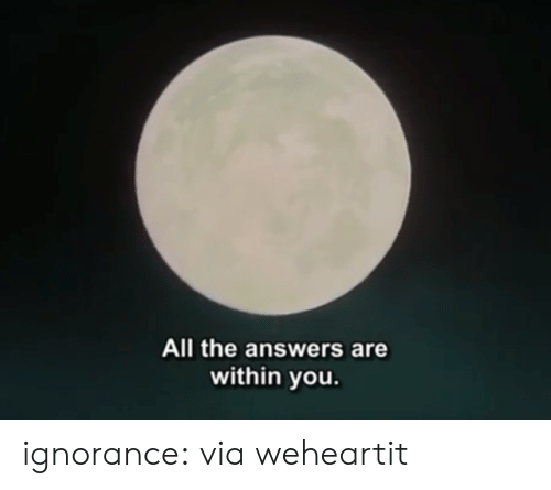 Ignorance: All the answers are  within you ignorance:  via weheartit