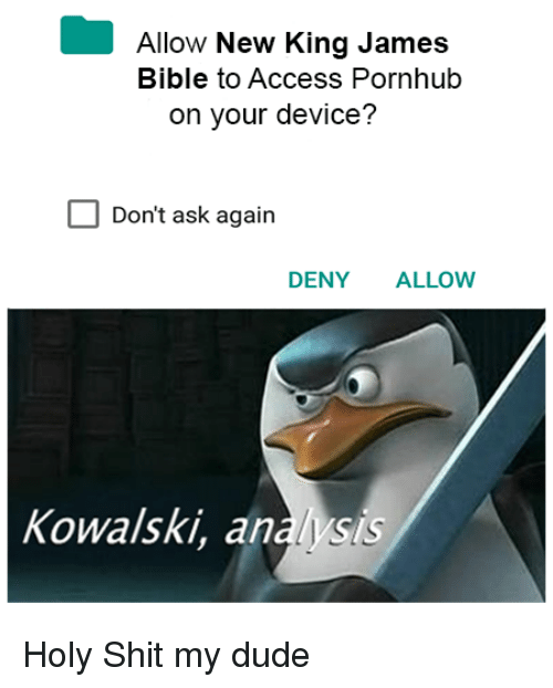 Dude, Pornhub, and Shit: Allow New King James  Bible to Access Pornhub  on your device?  Don't ask again  DENY ALLOW  Kowalski, analysis Holy Shit my dude