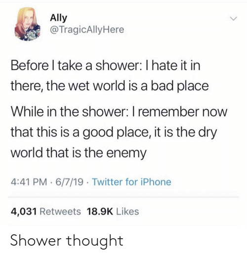 Ally: Ally  @TragicAlly Here  Before I take a shower: I hate it in  there, the wet world is a bad place  While in the shower: I remember now  that this is a good place, it is the dry  world that is the enemy  4:41 PM 6/7/19 Twitter for iPhone  4,031 Retweets 18.9K Likes Shower thought