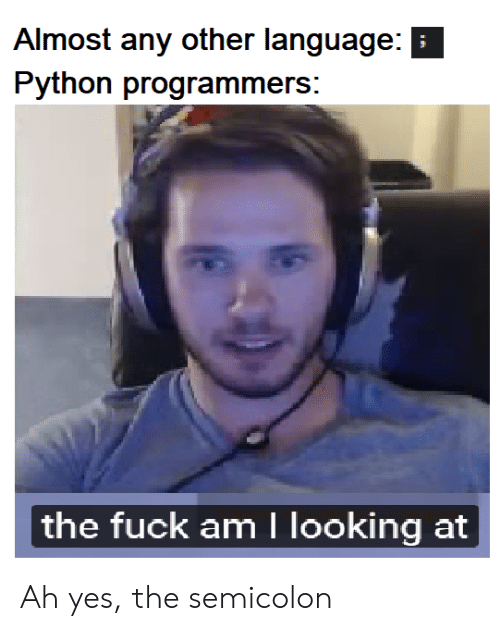 Fuck, Python, and Yes: Almost any other language:  Python programmers:  the fuck am I looking at Ah yes, the semicolon