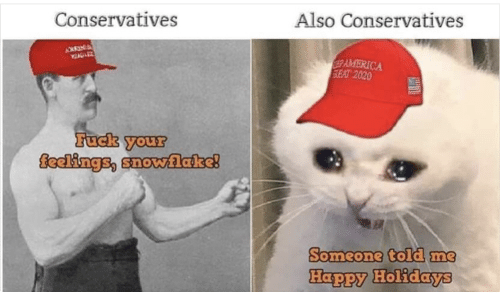 America, Fuck, and Happy: Also Conservatives  Conservatives  AMERICA  SEAT 2020  Fuck your  feelings, snovwlake!  Someone told me  Happy Holidays