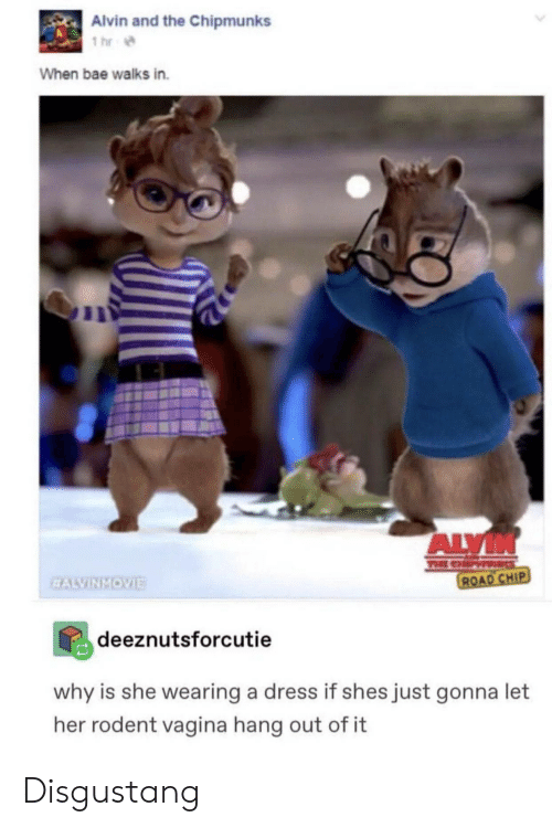 Bae, Dress, and Vagina: Alvin and the Chipmunks  1 hr  When bae walks in.  ALVIN  TEE CHP  ROAD CHIP  EALVINMOVIE  deeznutsforcutie  why is she wearing a dress if shes just gonna let  her rodent vagina hang out of it Disgustang