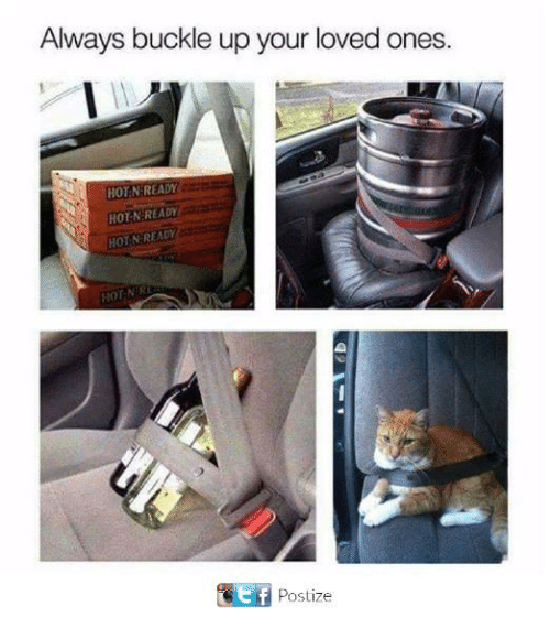 Memes, Buckle, and 🤖: Always buckle up your loved ones.  HOT N READY  HOT N READY  HOT N READY  HOTNER  Ef  Postize