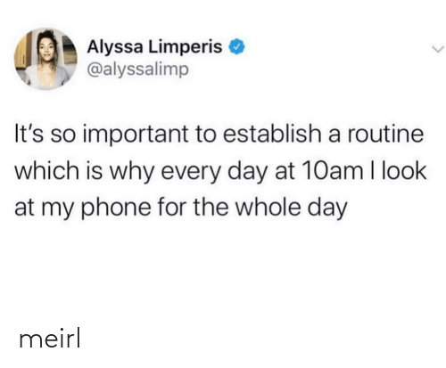 Look At My: Alyssa Limperis  @alyssalimp  It's so important to establish a routine  which is why every day at 10am I look  at my phone for the whole day meirl