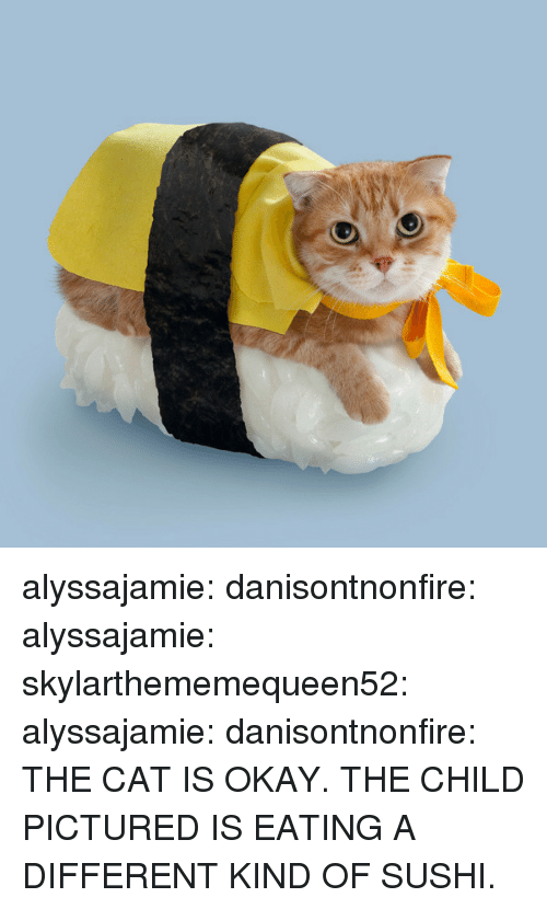 Tumblr, Blog, and Http: alyssajamie:  danisontnonfire:  alyssajamie:  skylarthememequeen52:  alyssajamie:   danisontnonfire:    THE CAT IS OKAY. THE CHILD PICTURED IS EATING A DIFFERENT KIND OF SUSHI.