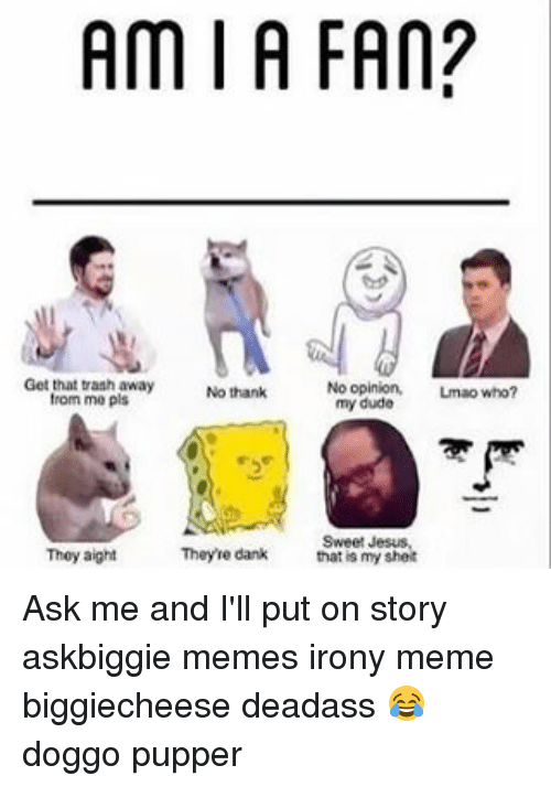 Irony Meme: Am I A FAN?  Get that trash away  No thanks  from me pls  No opinion,  Lmao who?  my dude  Sweet Jesus,  They aight  Theyre dank  thatis my shelt Ask me and I'll put on story askbiggie memes irony meme biggiecheese deadass 😂 doggo pupper