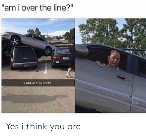 """Bitch, Yes, and Think: """"am i over the line?""""  Look at this bitch Yes i think you are"""