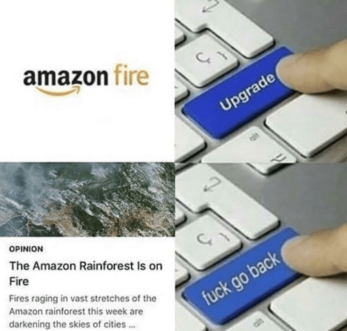 vast: amazon fire  Upgrade  OPINION  The Amazon Rainforest Is on  Fire  Fires raging in vast stretches of the  Amazon rainforest this week are  fuck go back  darkening the skies of cities