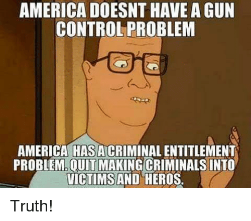 America, Memes, and Control: AMERICA DOESNT HAVE A GUN  CONTROL PROBLEM  AMERICA HAS A CRIMINAL ENTITLEMENT  PROBLEM.OUIT MAKING CRIMINALS INTO  VICTIMS AND HEROS Truth!