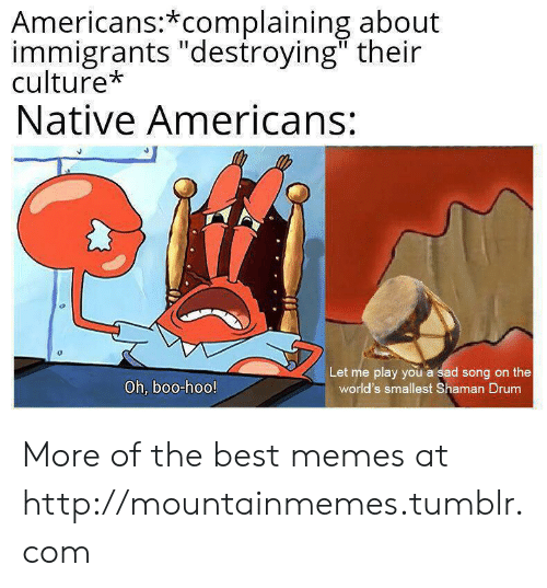 "Immigrants: Americans:*complaining about  immigrants ""destroying"" their  culture*  Native Americans:  Let me play you a sad song on the  world's smallest Shaman Drum  Oh, boo-hoo! More of the best memes at http://mountainmemes.tumblr.com"