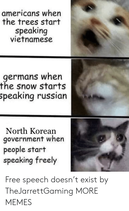 germans: americans when  the trees start  speaking  vietnamese  germans when  the snow starts  peaking russian  North Korean  government when  people start  speaking freely Free speech doesn't exist by TheJarrettGaming MORE MEMES