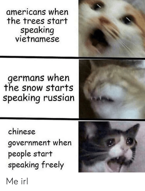 germans: americans when  the trees start  speaking  vietnamese  germans when  the snow starts  speaking russian  chinese  government when  people start  speaking freely Me irl