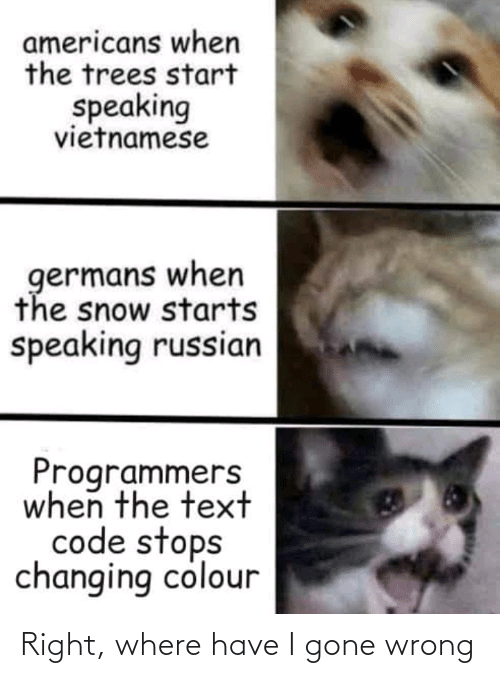Gone Wrong: americans when  the trees start  speaking  vietnamese  germans when  the snow starts  speaking russian  Programmers  when the text  code stops  changing colour Right, where have I gone wrong
