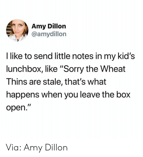 """Dank, Sorry, and Kids: Amy Dillon  @amydillon  I like to send little notes in my kid's  lunchbox, like """"Sorry the Wheat  Thins are stale, that's what  happens when you leave the box  open."""" Via: Amy Dillon"""