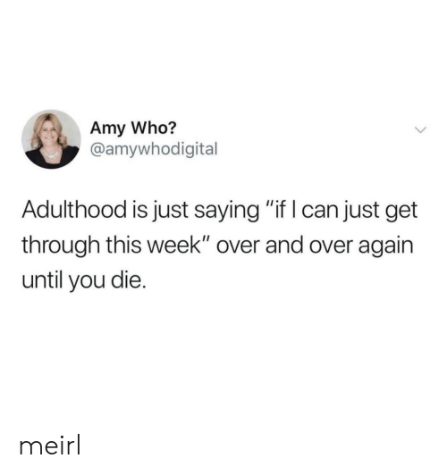 "MeIRL, Who, and Amy: Amy Who?  @amywhodigital  Adulthood is just saying ""if I can just get  through this week"" over and over again  until you die. meirl"