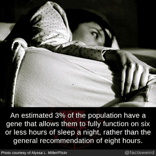 Memes, Flickr, and The General: An estimated 3% of the population have a  gene that allows them to fully function on six  or less hours of sleep a night, rather than the  general recommendation of eight hours.  Photo courtesy of Alyssa L. Miller/Flickr  @factsweird