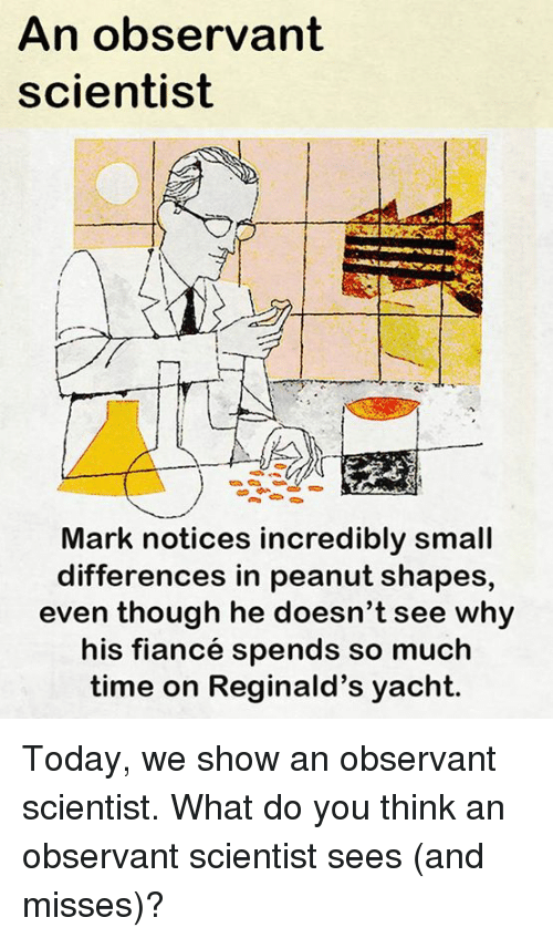 observant: An observant  scientist  Ir  Mark notices incredibly small  differences in peanut shapes,  even though he doesn't see why  his fiancé spends so much  time on Reginald's yacht. Today, we show an observant scientist.  What do you think an observant scientist sees (and misses)?