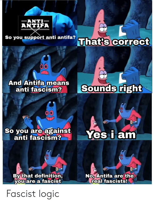 A Fascist: AN TIFA  So you support anti antifa?  That's correct  And Antifa means  anti fascism2  Sounds right  So you are against Yes i am  anti fascism?  By that definition  you are a fascist  No Antifa are the  real fascists! Fascist logic