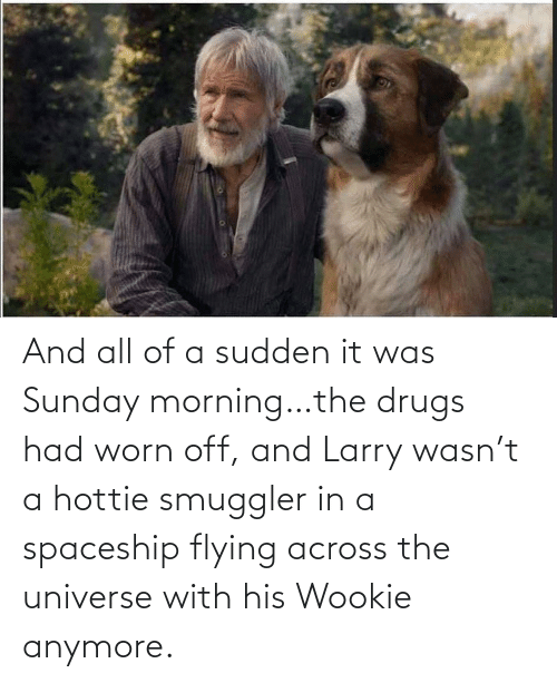 Flying: And all of a sudden it was Sunday morning…the drugs had worn off, and Larry wasn't a hottie smuggler in a spaceship flying across the universe with his Wookie anymore.