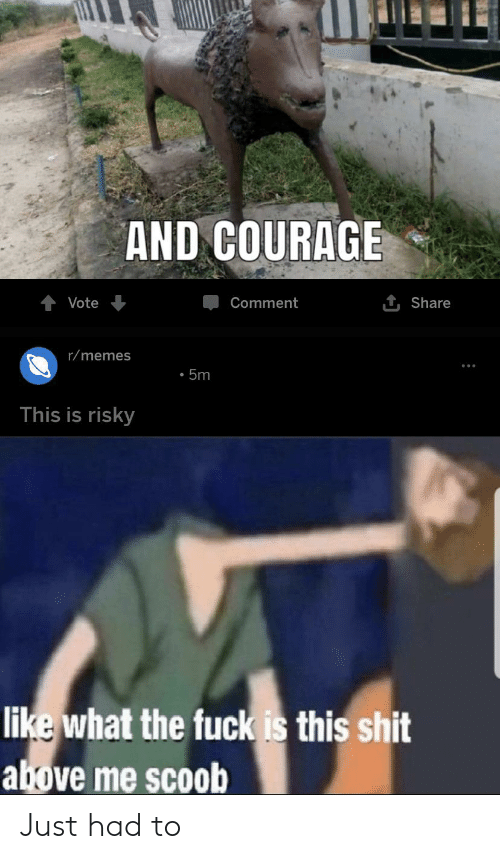 Memes, Reddit, and Shit: AND COURAGE  1 Share  Vote  Comment  r/memes  5m  This is risky  like what the fuck is this shit  above me scoob Just had to
