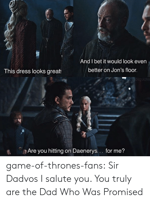 I Salute You: And I bet it would look even  better on Jon's floor  This dress looks great:  MOinco ecigotquote  t Are you hitting on Daenerys.. for me? game-of-thrones-fans:  Sir Dadvos I salute you. You truly are the Dad Who Was Promised