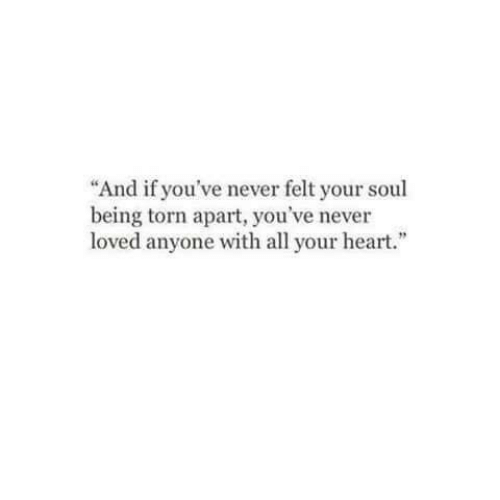 "torn: ""And if you've never felt your soul  being torn apart, you've never  loved anyone with all your heart."""