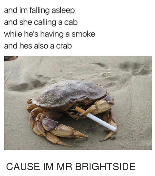 Funny, Crab, and She: and im falling asleep  and she calling a cab  while he's having a smoke  and hes also a crab CAUSE IM MR BRIGHTSIDE