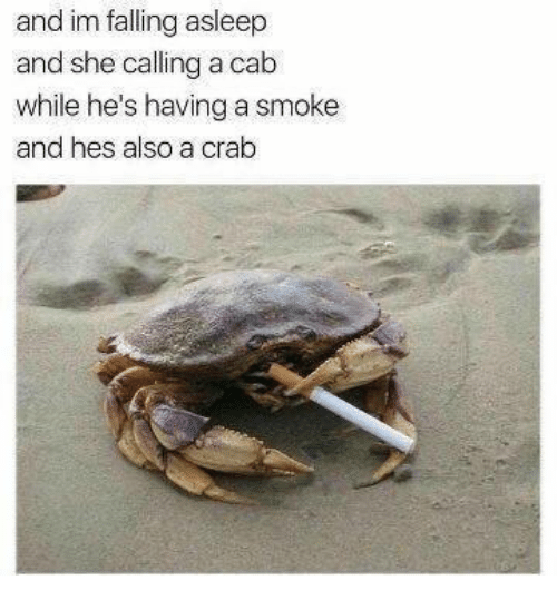 Crab, She, and Cab: and im falling asleep  and she calling a cab  while he's having a smoke  and hes also a crab
