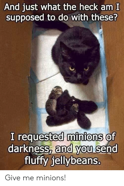 Minions: And just what the heck am I  supposed to do with these?  I requested minions of  darkness, and you send  fluffy jellybeans. Give me minions!