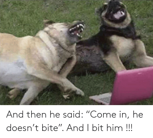 "then: And then he said: ""Come in, he doesn't bite"". And I bit him !!!"