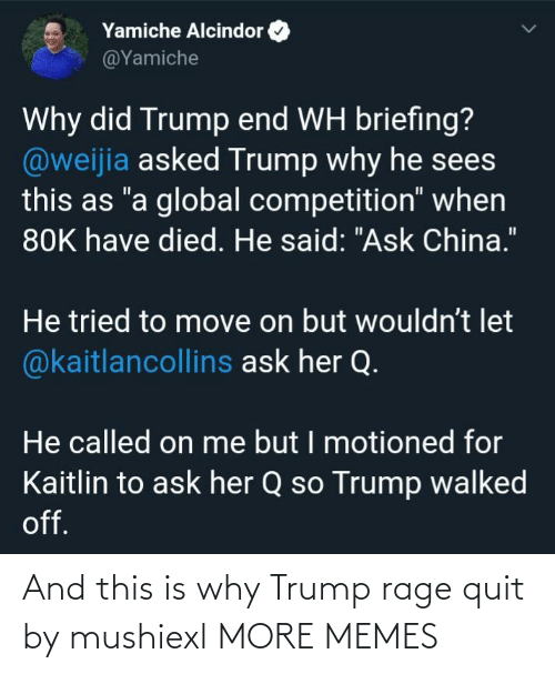 rage: And this is why Trump rage quit by mushiexl MORE MEMES