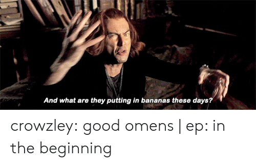 Target, Tumblr, and Blog: And what are they putting in bananas these days? crowzley:  good omens | ep: in the beginning