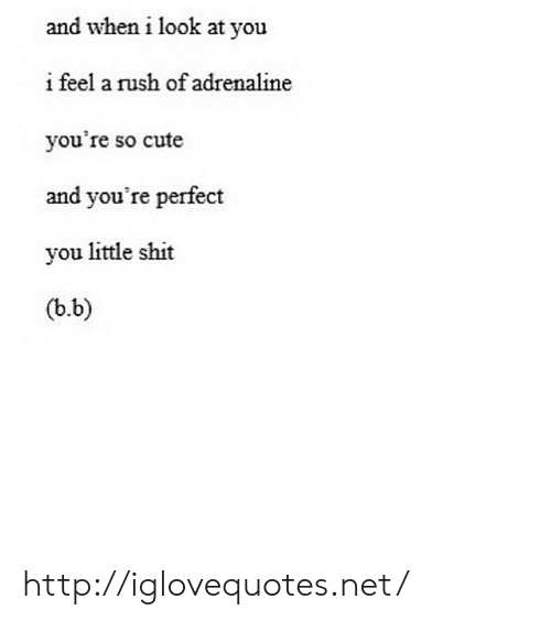 B. B.: and when i look at you  i feel a rush of adrenaline  you're so cute  and you're perfect  you little shit  (b.b) http://iglovequotes.net/