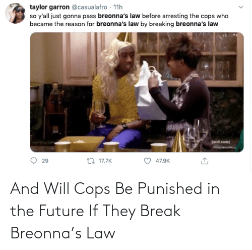 In The: And Will Cops Be Punished in the Future If They Break Breonna's Law