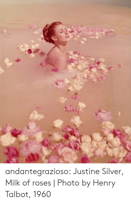 Tumblr, Blog, and Http: andantegrazioso:   Justine Silver, Milk of roses | Photo by Henry Talbot, 1960