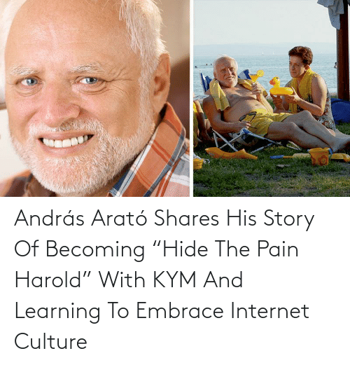 "Pain: András Arató Shares His Story Of Becoming ""Hide The Pain Harold"" With KYM And Learning To Embrace Internet Culture"