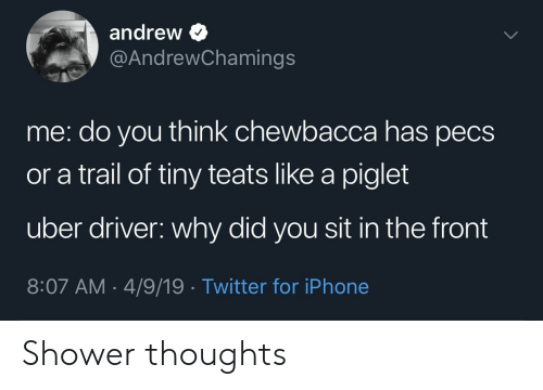 piglet: andrew >  @AndrewChamings  me: do you think chewbacca has pecs  or a trail of tiny teats like a piglet  uber driver: why did you sit in the front  8:07 AM- 4/9/19 Twitter for iPhone Shower thoughts