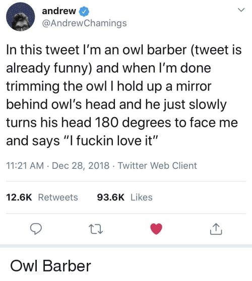 "Barber, Funny, and Head: andrew  @AndrewChamings  In this tweet I'm an owl barber (tweet is  already funny) and when l'm done  trimming the owl I hold up a mirror  behind owl's head and he just slowly  turns his head 180 degrees to face me  and says ""l fuckin love it""  11:21 AM Dec 28, 2018 Twitter Web Client  12.6K Retweets 93.6K Likes Owl Barber"
