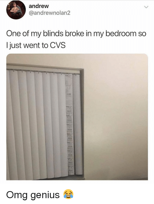 Memes, Omg, and Genius: andrew  @andrewnolan2  One of my blinds broke in my bedroom so  I just went to CVS Omg genius 😂