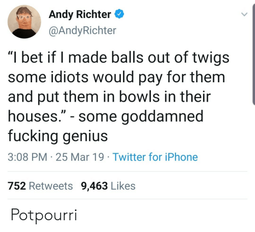 "Fucking, I Bet, and Iphone: Andy Richter  @AndyRichter  ""I bet if I made balls out of twigs  some idiots would pay for them  and put them in bowls in their  houses."" - some goddamned  fucking genius  3:08 PM 25 Mar 19 Twitter for iPhone  752 Retweets 9,463 Likes Potpourri"