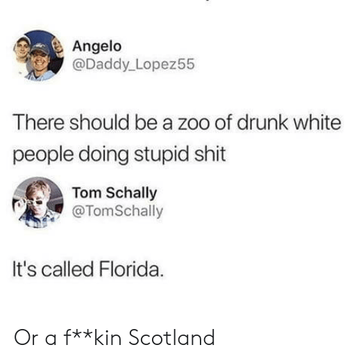 Drunk, Shit, and White People: Angelo  @Daddy Lopez55  There should be a zoo of drunk white  people doing stupid shit  Tom Schally  @TomSchally  It's called Florida Or a f**kin Scotland