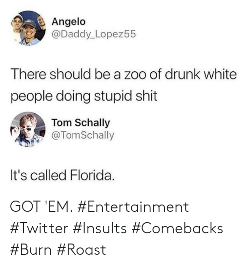zoo: Angelo  @Daddy_Lopez55  There should be a zoo of drunk white  people doing stupid shit  Tom Schally  @TomSchally  It's called Florida GOT 'EM. #Entertainment #Twitter #Insults #Comebacks #Burn #Roast