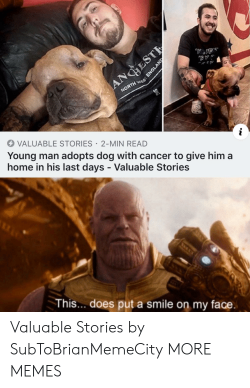 England: ANGHEST  NORTH ES  VALUABLE STORIES 2-MIN READ  Young man adopts dog with cancer to give him a  home in his last days - Valuable Stories  This... does put a smile on my face.  ENGLAND Valuable Stories by SubToBrianMemeCity MORE MEMES