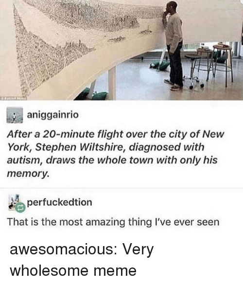 Meme, New York, and Stephen: aniggainrio  After a 20-minute flight over the city of New  York, Stephen Wiltshire, diagnosed with  autism, draws the whole town with only his  memory.  erfuckedtion  That is the most amazing thing I've ever seen awesomacious:  Very wholesome meme