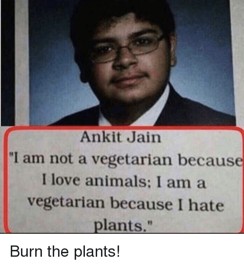 "I Am Not A: Ankit Jain  ""I am not a vegetarian because  I love animals: I am a  vegetarian because I hate  plants,"" Burn the plants!"
